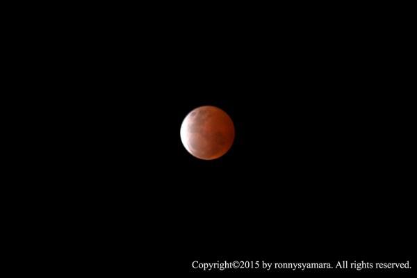 Gerhana Bulan Total 4 April 2015 dilihat dari Sofifi. Fotografer: Ronny Syamara