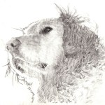 Gerhard Art former background illustrator, Cerebus the Aardvark.