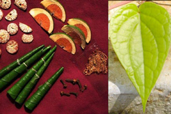 [photo] image of items used in paan chewing session