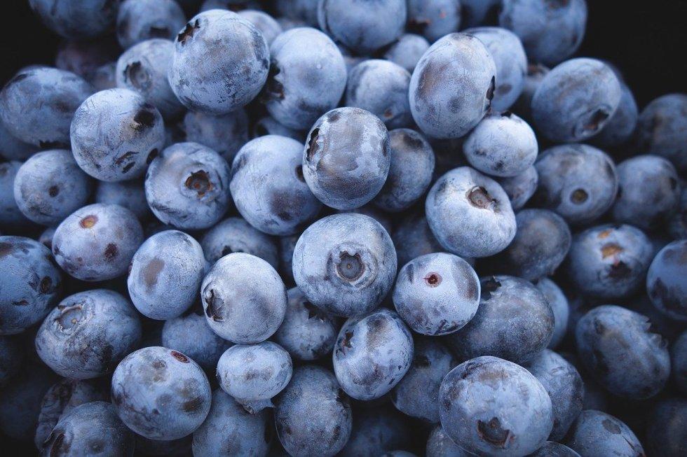 Can German Shepherds Eat Blueberries