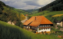 The Black Forest: hills, clocks, wine and cake