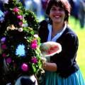 Viehscheid Bavaria decorated cow