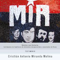 LIBRILLO_Testimonio Cristián Antonio Miranda Molina