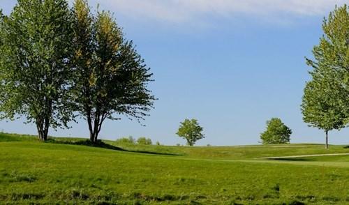 Dam Beaver Country Club Course Golf