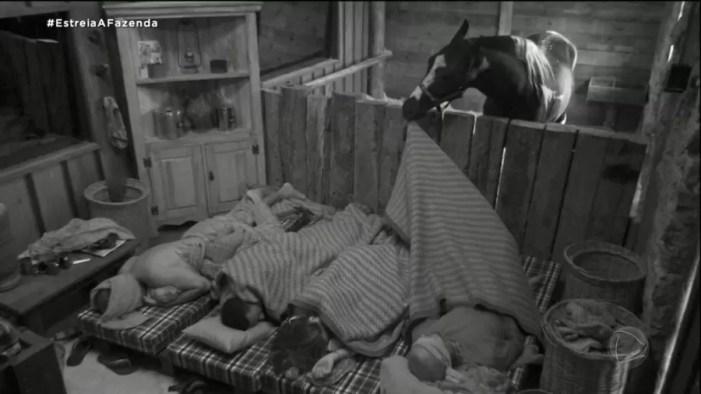 Cavalo Colorado rouba a cena; Nego do Borel está na baia (Foto: Reprodução)