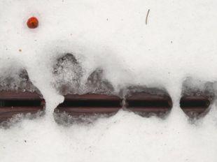 Snow melt patterns 05