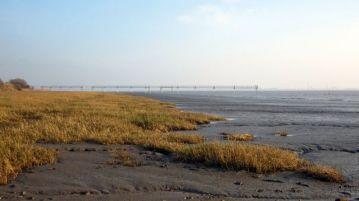 Coastal Reserve 16