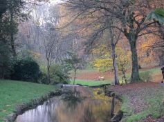 Upper Brook 4
