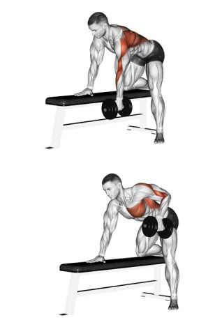 One Arm DUMBBELL Row BACK
