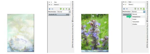 Aquarell-Texturen in Inkscape| Gesche Santen
