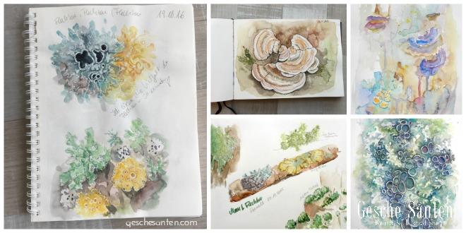 Flechten malen und zeichnen