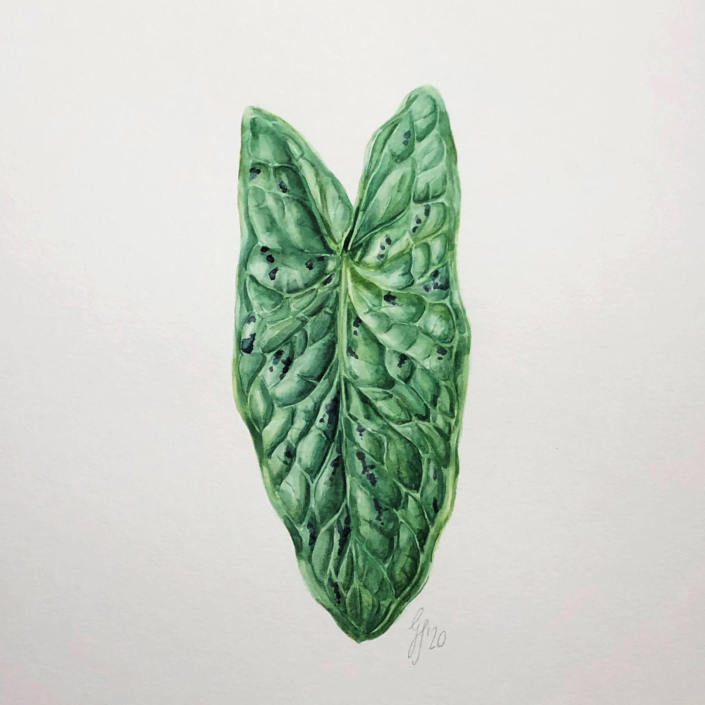 Warum du kein Talent zum Malen brauchst