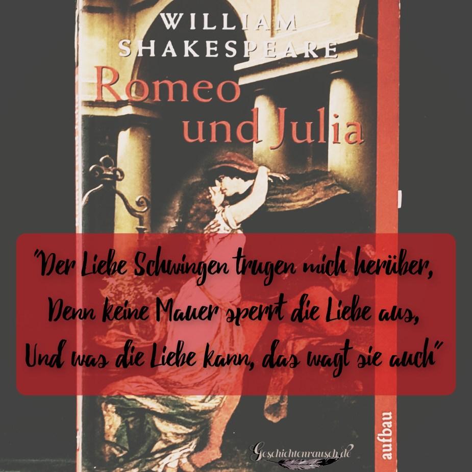 """""""Der Liebe Schwingen trugen mich herüber , denn keine mauer sperrt die Liebe aus, und was die Liebe kann, das wagt sie auch"""" aus Romeo und Julia von Shakespeare"""
