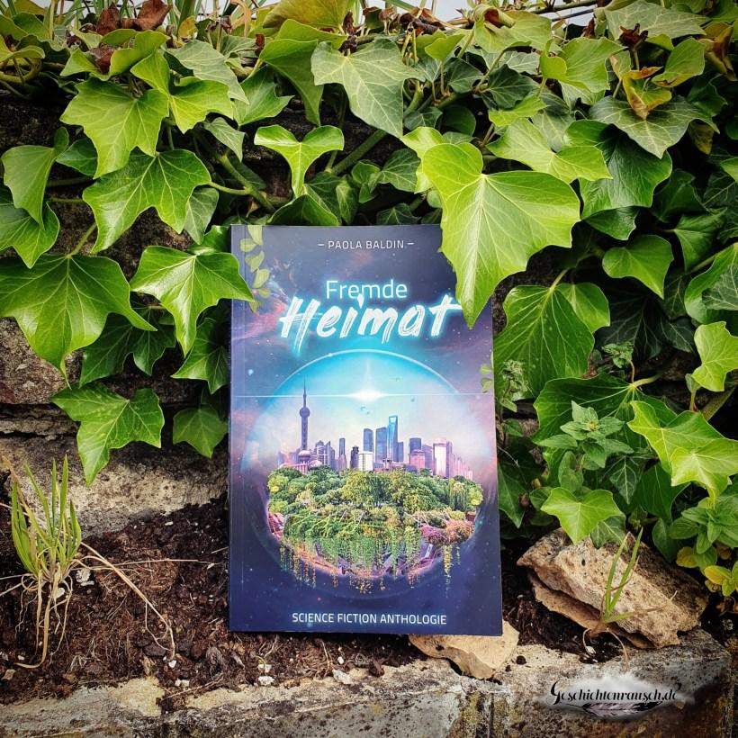 Cover von Fremde Heimat von Paola Baldin
