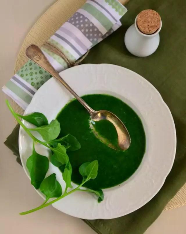 Suppe aus Neuseelandspinat