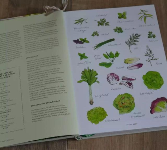 Die Jahreszeiten Kochschule Frühling, Seiser Rauch Illustration