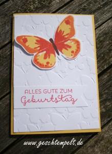 Stampin up, Schmetterlingsschwarm, Watercolor wings, Landlust