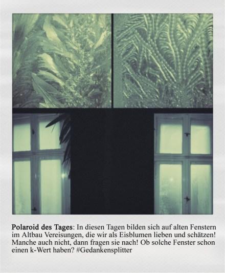 Polaroid des Tages: Vereiste Fenster