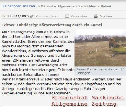Kamele in Teltow (screenshot)