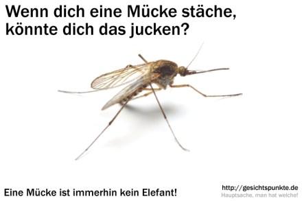 Aus einer Mücke einen Elefanten machen!