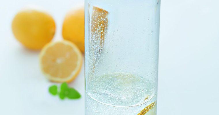 Die Karaffe BRIOSO von LEONARDO – Für erfrischende Getränke zum Selbermachen