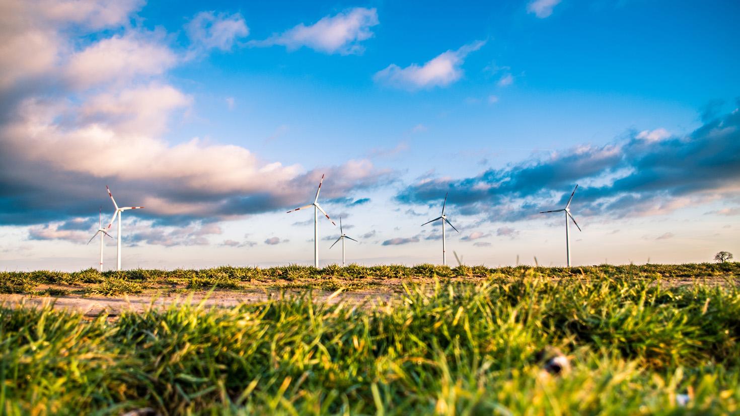 Grüne Segel setzen: Das Terra Institute am CSR-Tag 2020