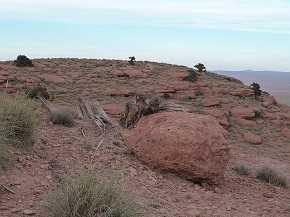 Imagen del Djebel Lakhdar, al sur de Marruecos, donde se ha llevado a cabo el estudio.