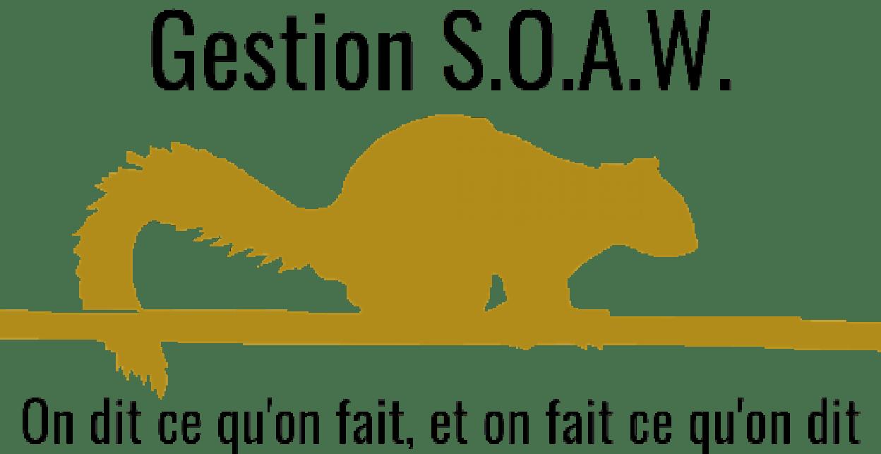 Gestion S.O.A.W.
