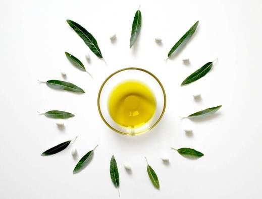 Ist Öl Gesund? Gesund und Fit leben Olive