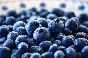 Heidelbeeren - nicht nur lecker, auch sehr gesund