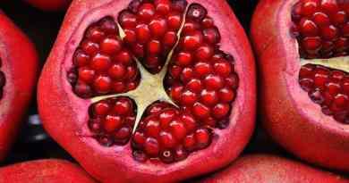 Granatapfel - rot, lecker und gesund