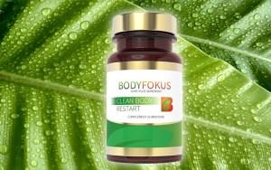 BodyFokus Clean Body Restart: Inhaltsstoffe, Erfahrungen und Tests