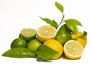 limonene-und-limetten-laenger-saefte-halten.