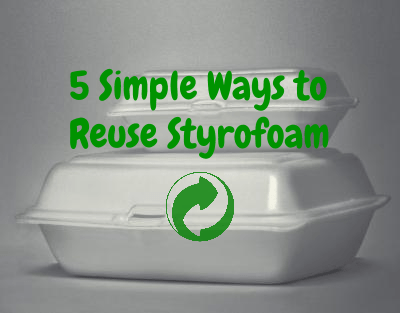 5 simple and effective ways to reuse styrofoam