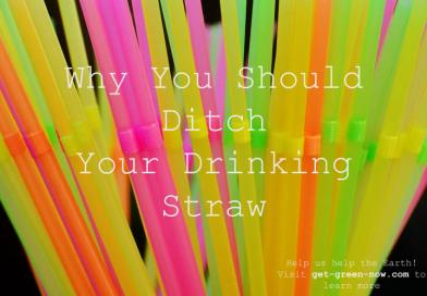 Ditch Plastic Drinking Straws