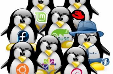 Linux Nedir? Linux'e Giriş, Linux İşletim Sisteminden Ötesi :