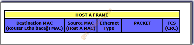 Frame Packet