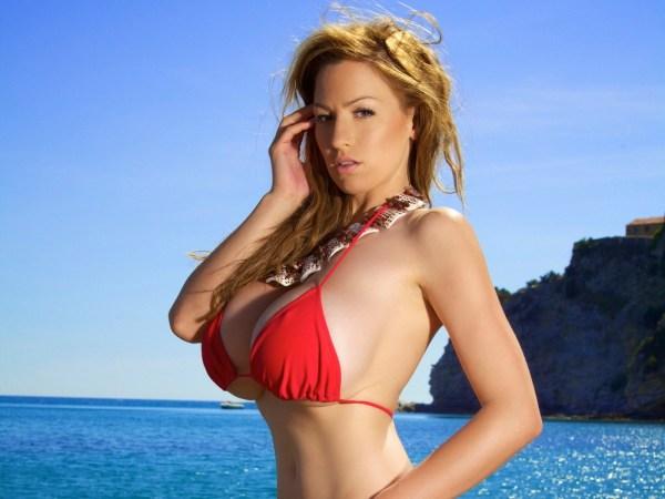 Wallpaper : model, long hair, big boobs, Jordan Carver ...