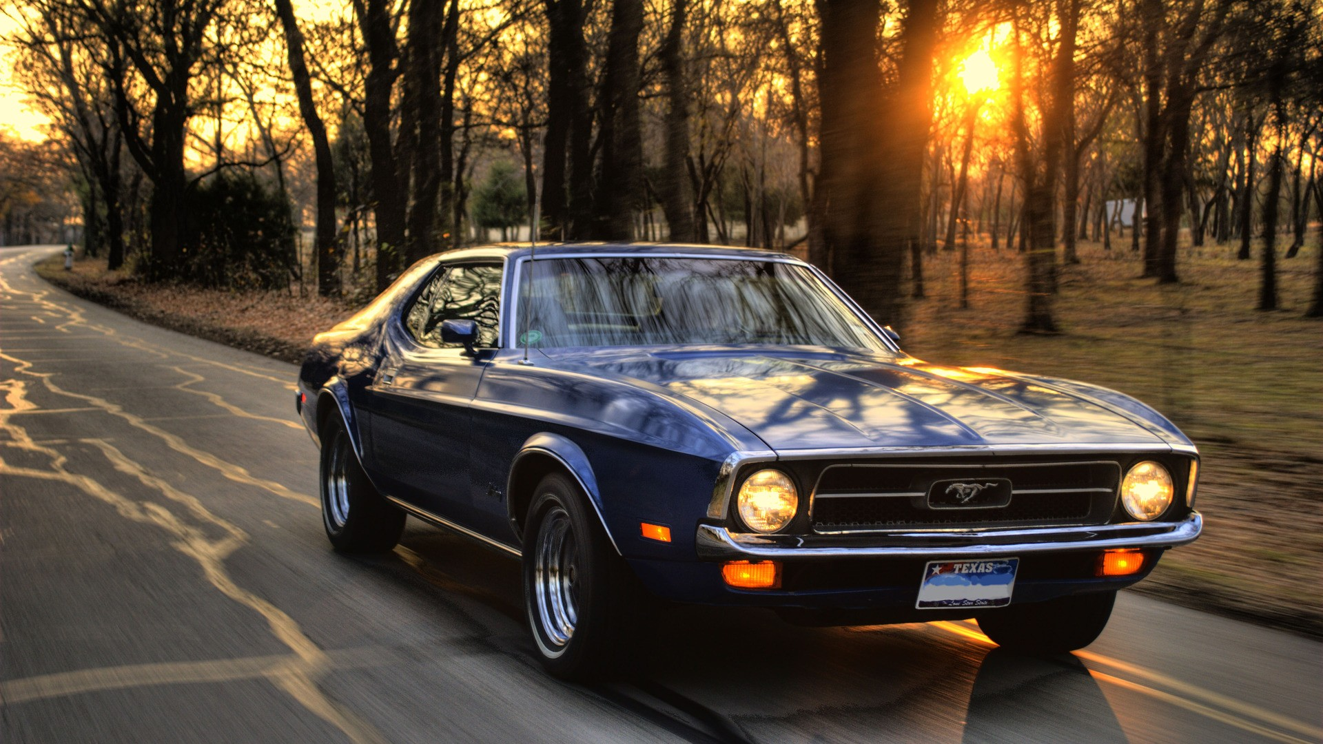 Wallpaper Trees Sunset Road Ford Mustang Muscle Cars