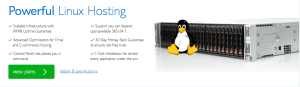 BlueHost India Linux Hosting