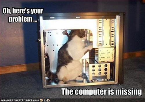 funnies computer missing cat
