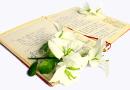 Vuelve De poesía por Getafe
