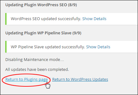 How To Automatically Upgrade And Delete Plugins