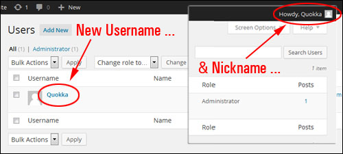 How To Change Your Admin Username In WordPress To A More Secure User Name