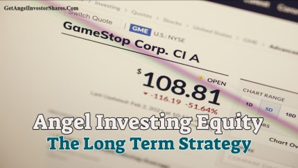 Angel Investing Equity