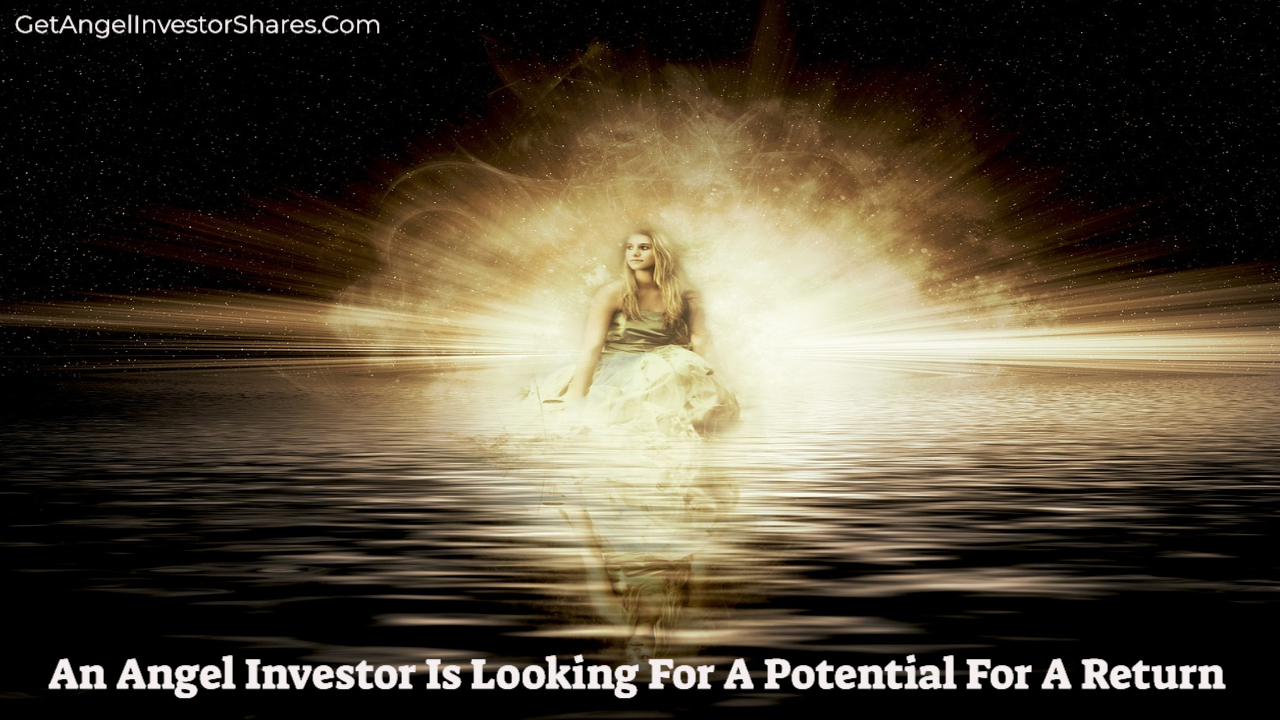 An Angel Investor