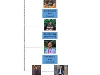 Immunity strikes Organizational chart