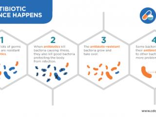 How_Antibiotic_Resistance_Happens_508-medium
