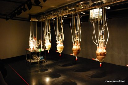 20-Mona Museum 11-1-2011 7-56-23 PM
