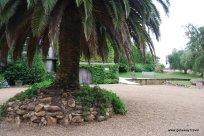 02-Stonyridge winery Waiheke Island New Zealand 2-4-2011 2-20-21 PM